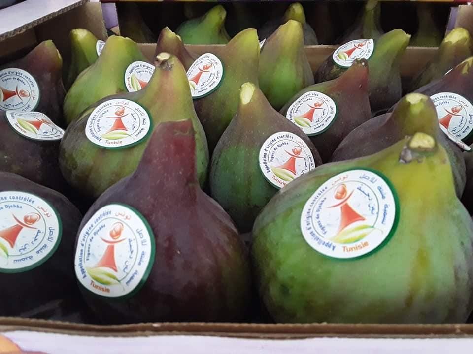 La Figue de Djebba obtient la certification de la protection internationale