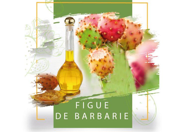 Une première mondiale: La Tunisie publie une Norme Technique spécifique à l'huile de pépins de figue de Barbarie